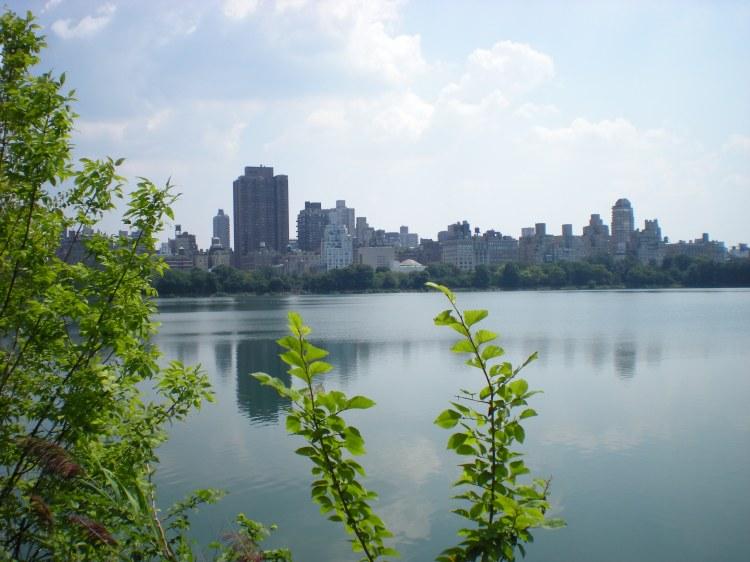 New York 2009 709